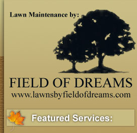 Lawn Maintenance by: Field of Dreams